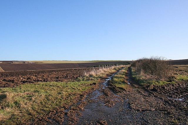 Lane sou'west of Darfash Farm