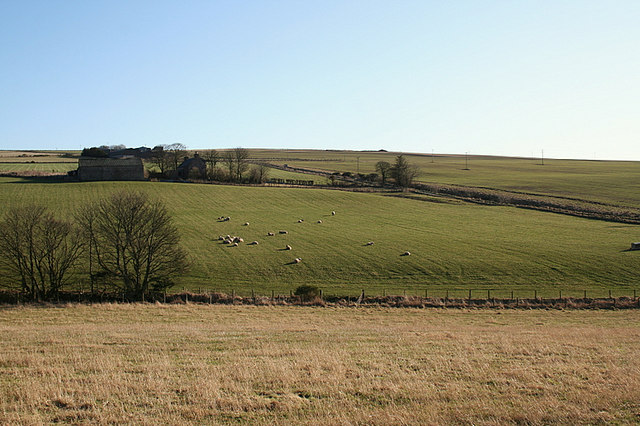 North Upperbrae Farm viewed from the nor'west