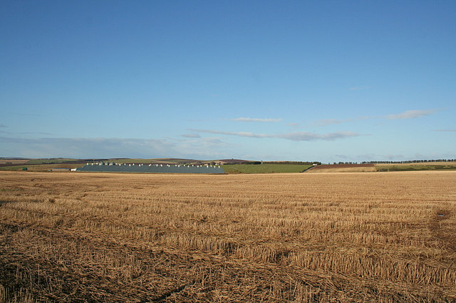 Stock sheds of Overbrae Farm beyond the stubble