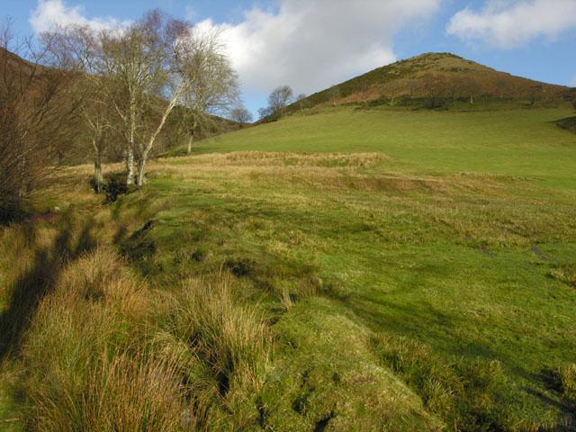 Field east of Cwm-clyd farm