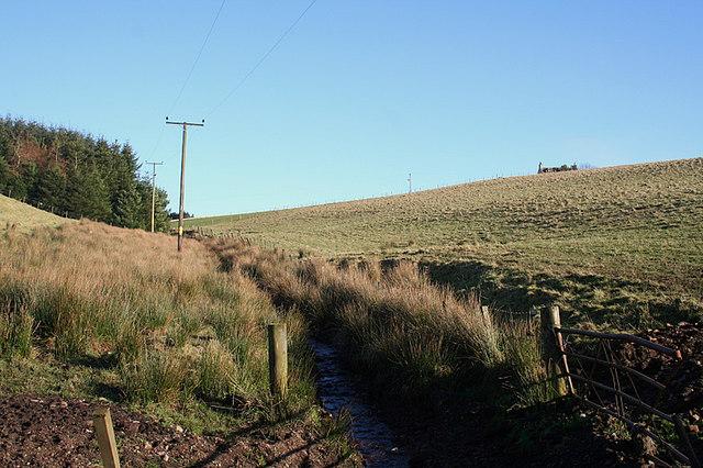 Fernie Slack runs to the northwest