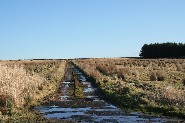 Track leading to the Moss of Fishrie