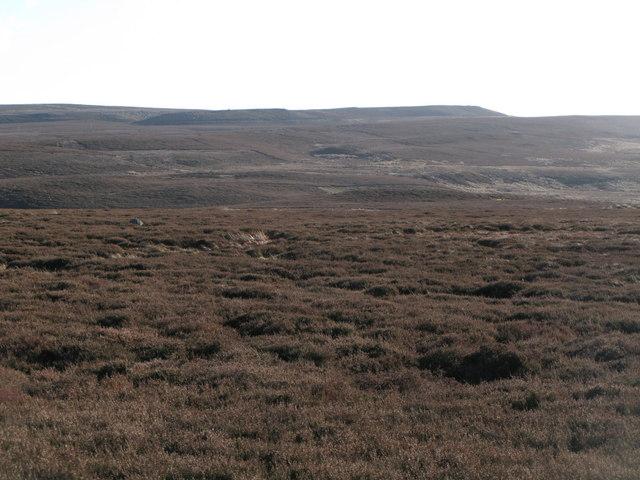 Westburnhope Moor