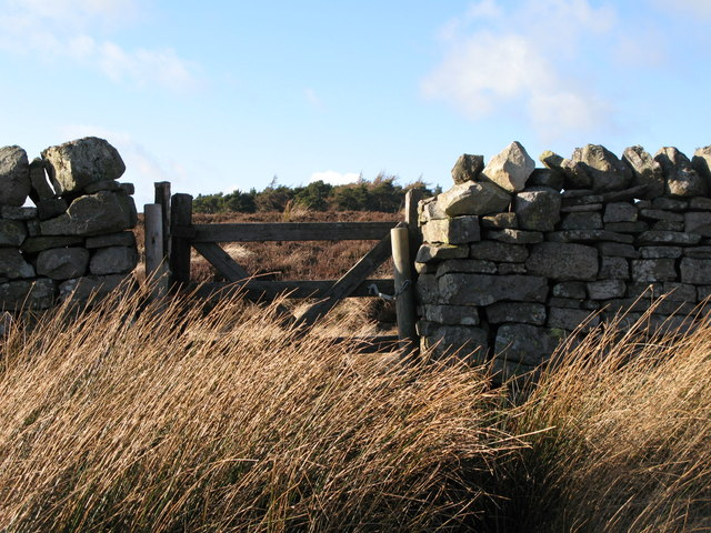 Gate in the wall and the plantation on Green Hill