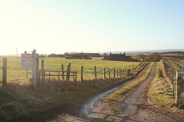 Typical Aberdeenshire farm lands