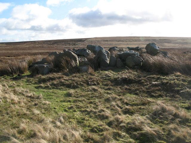 Rock outcrop near Haggerstone Moss (2)