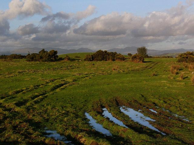 Rough pasture near Barvennan