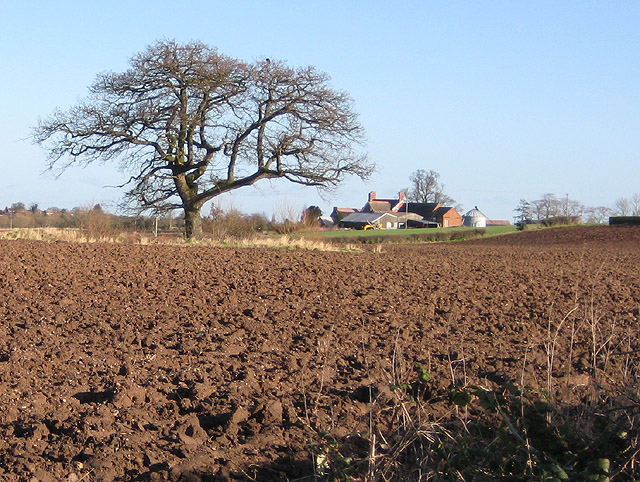 Ploughed field near Corse House Farm