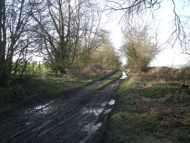 Track near Shepherdswhim