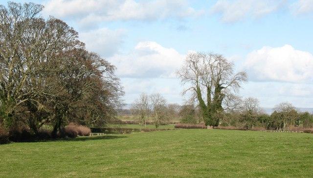Field at Aldborough