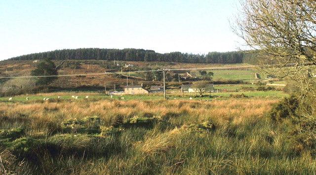 View across wetland towards Cerniog Isaf