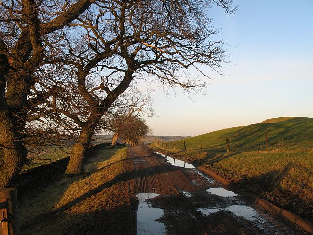 Farm track, Whitchesters