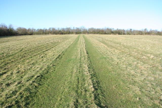 Field track west of Moat's Way Farm