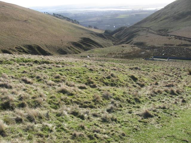 Ben Ever hillside  towards Silver Burn