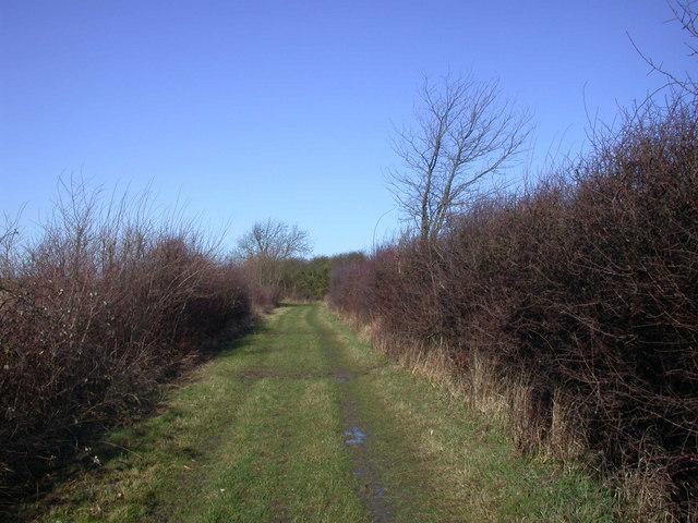 Bridleway to Rampton
