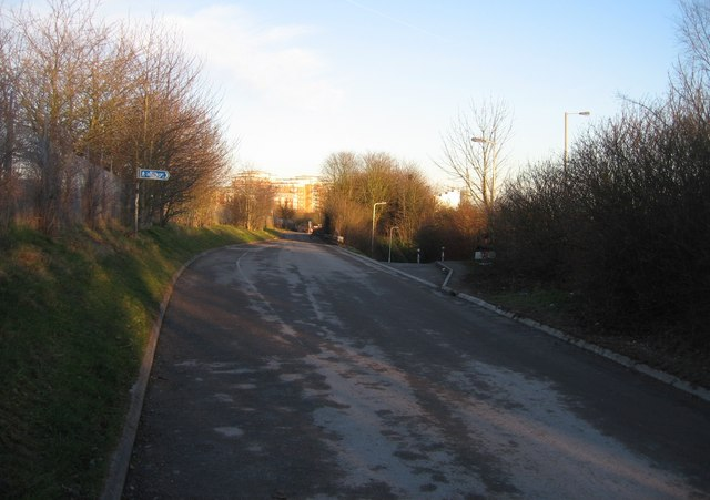 Cycle path towards town