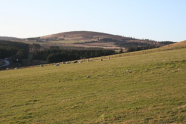 Pasture near Balnacraig