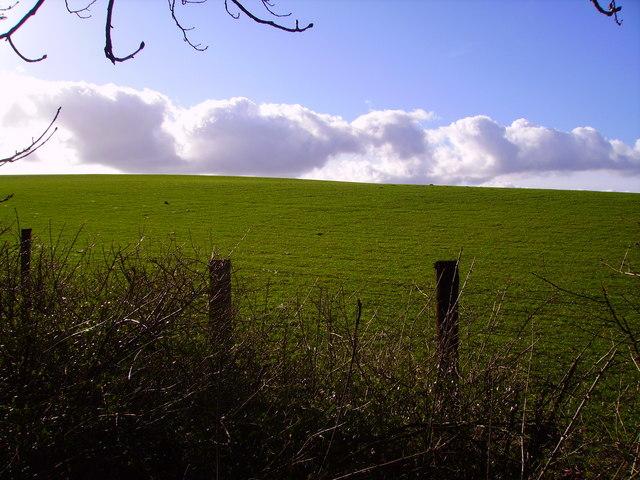 Barton Stacey - Fields