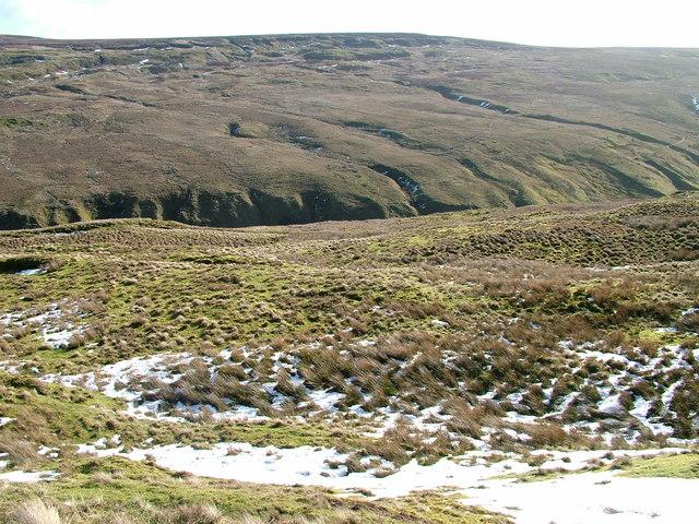 Moorside above East Gill