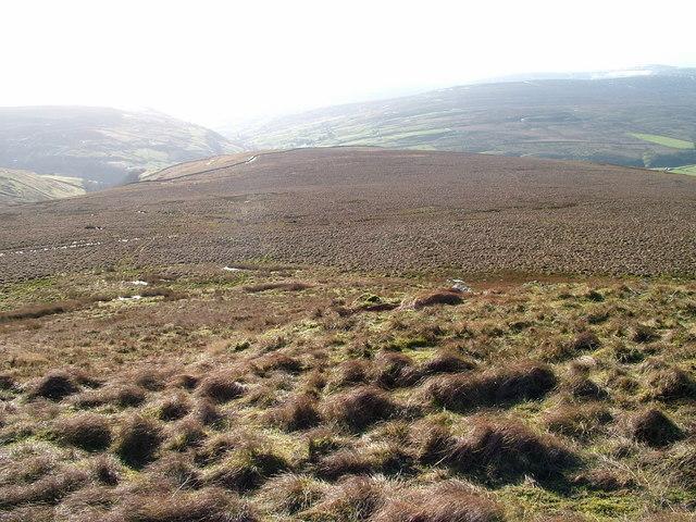 Black Moor  in East Stonedale