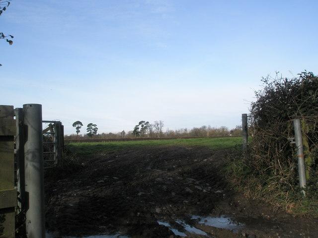 Muddy gateway near  Warblington Church