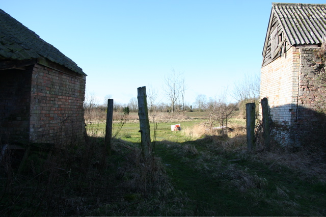 Farm Yard at Moat's Way Farm