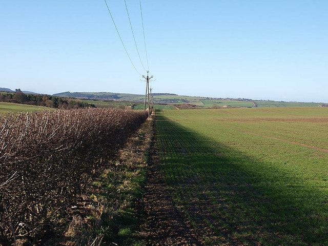 Warmland west of Kilton Thorpe Lane