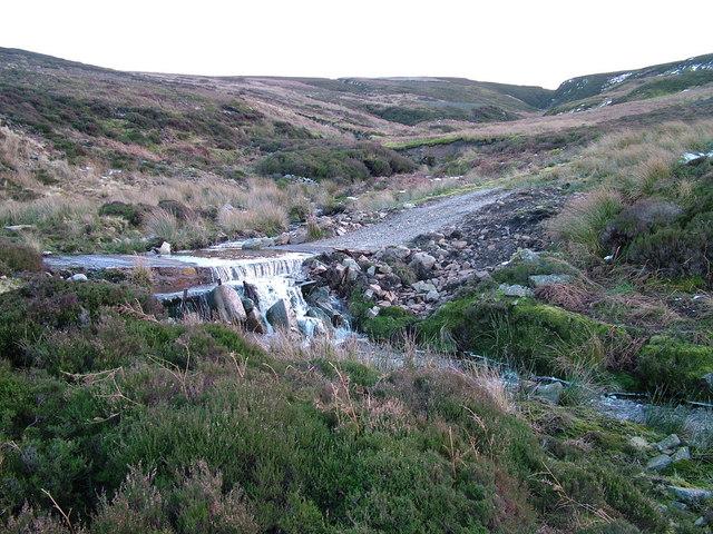 Track on Arkengarthdale Moor