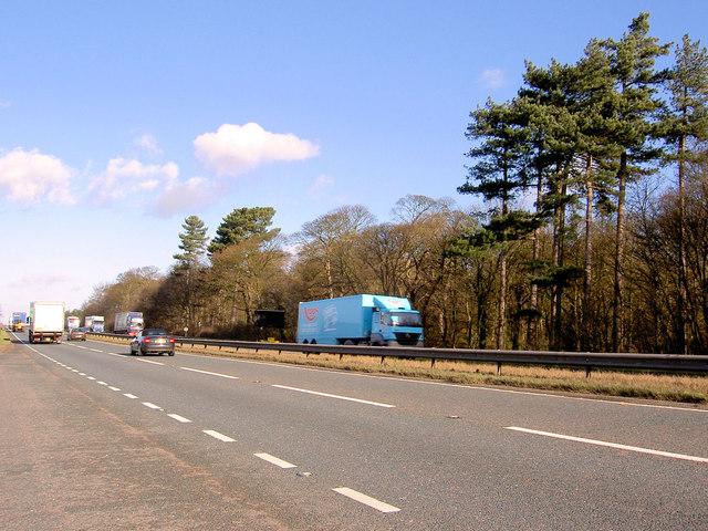 A1 North