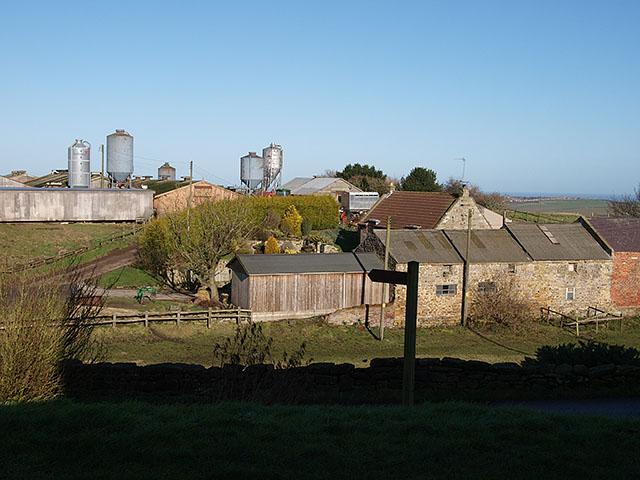 Well Farm