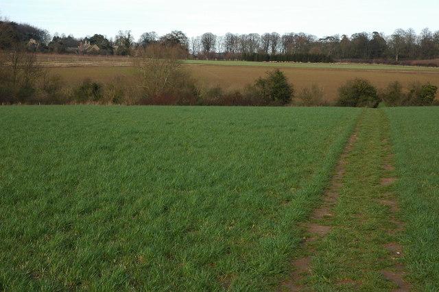 Footpath to Hidcote Bartrim