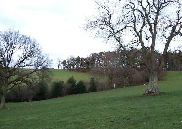 Grazing Land south of Peaton, Shropshire