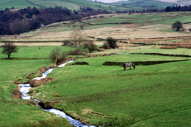 Pasture Between Cleggswood Hill and Hollingworth Hill