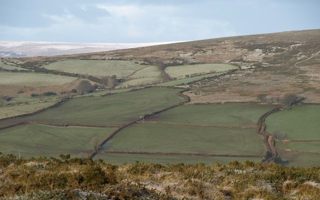 Fields below Hamel Down