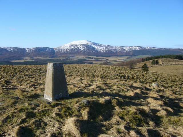 Hill of Corrachree trig