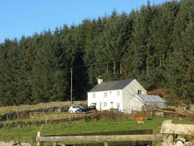 Tan-gwydd-dderwen - a house on the edge of the Mynydd Nefyn Forest