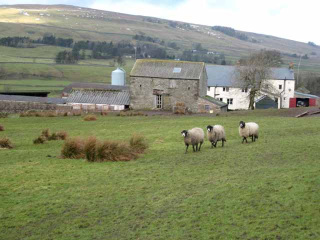 Bleagate Farm