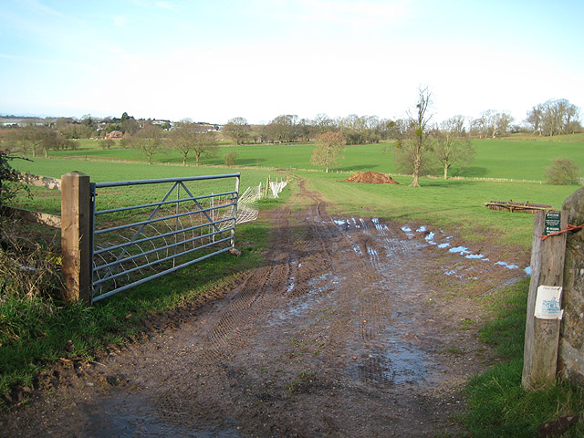 Footpath to Brand Green