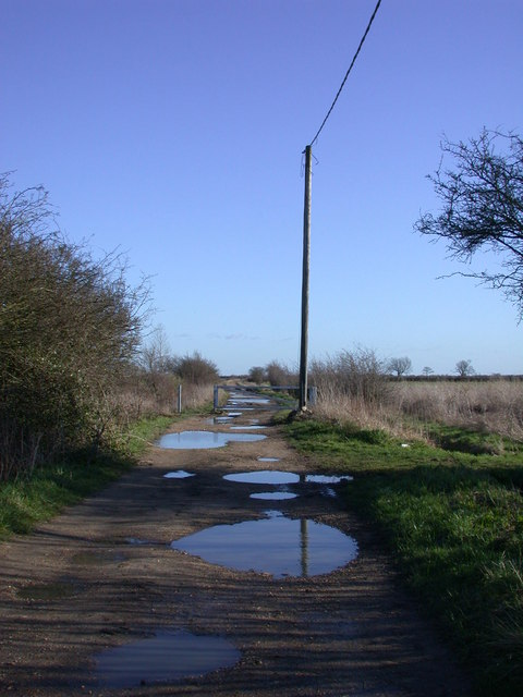 Puddles on the bridleway