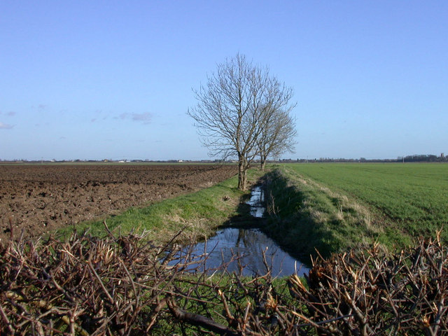 Farm ditch seen from Cow Lane