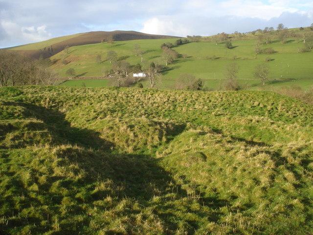 Radnor Castle motte