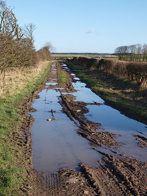 Freeholders' Close Lane