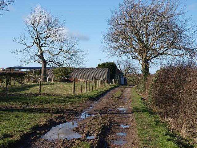 Cow Close Lane and South Lane Farm
