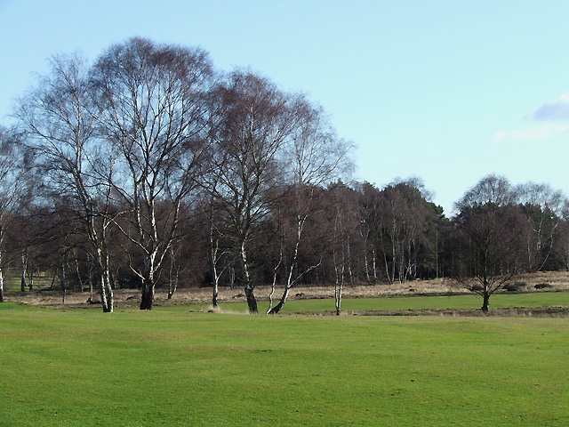 Golf Course  south of Highgate Common, Staffordshire