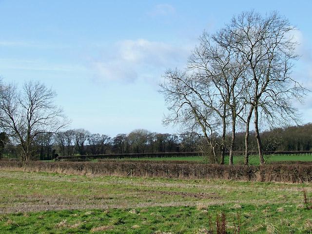 Staffordshire Farmland south of Highgate
