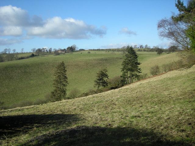 Grazing land near Mainstone