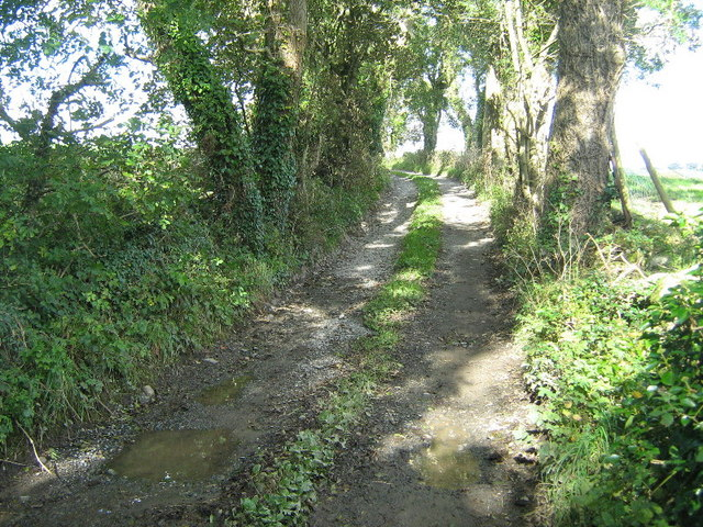 The track to Bodgylched