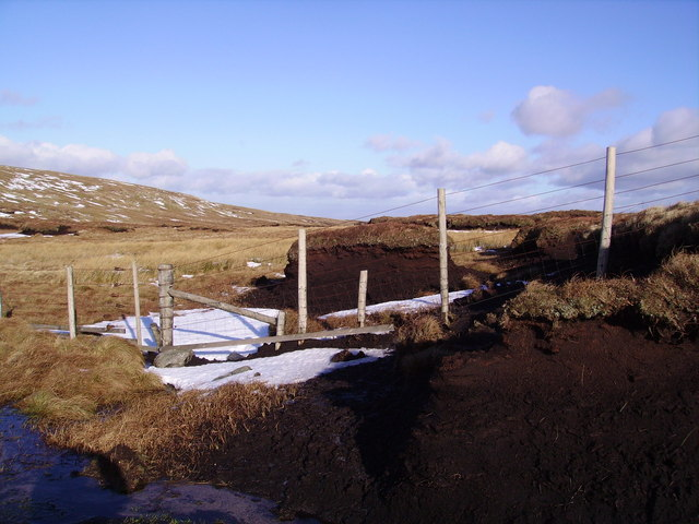 Fence and Peat Hag