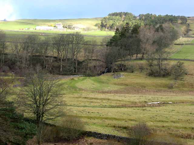 Valley of the South Tyne