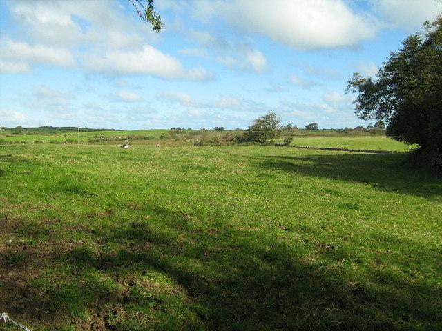 Farmland near Bodgylched